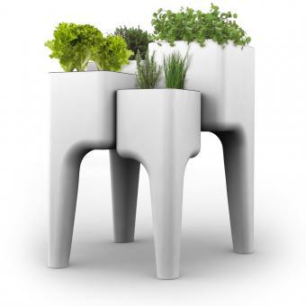 Photo of L'orto in cucina di design: Kiga Design Di Hurbz
