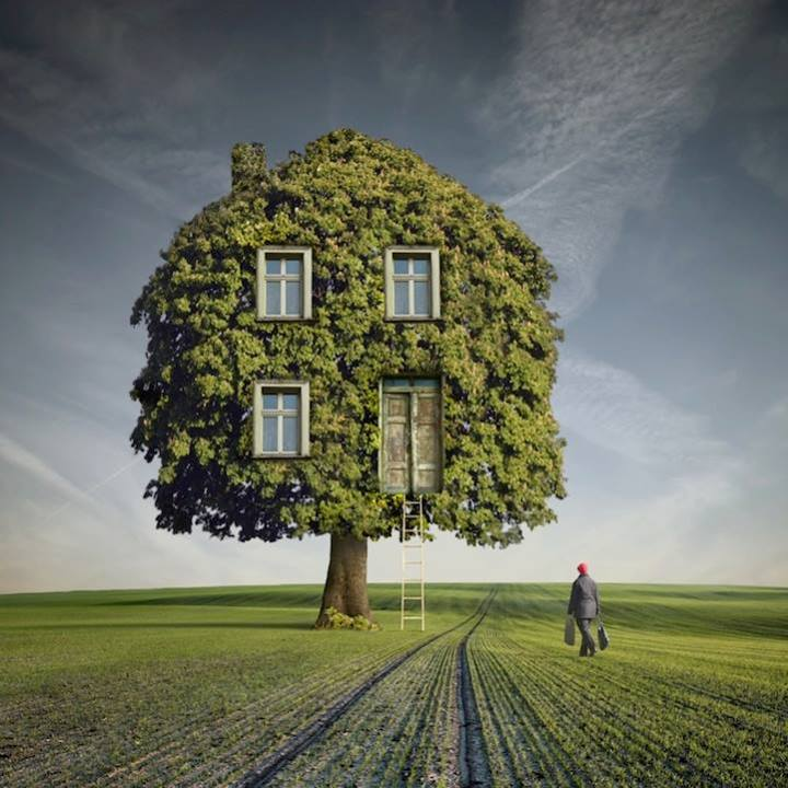 Photo of Wooden House dell'artista polacco Dariusz Klimczak
