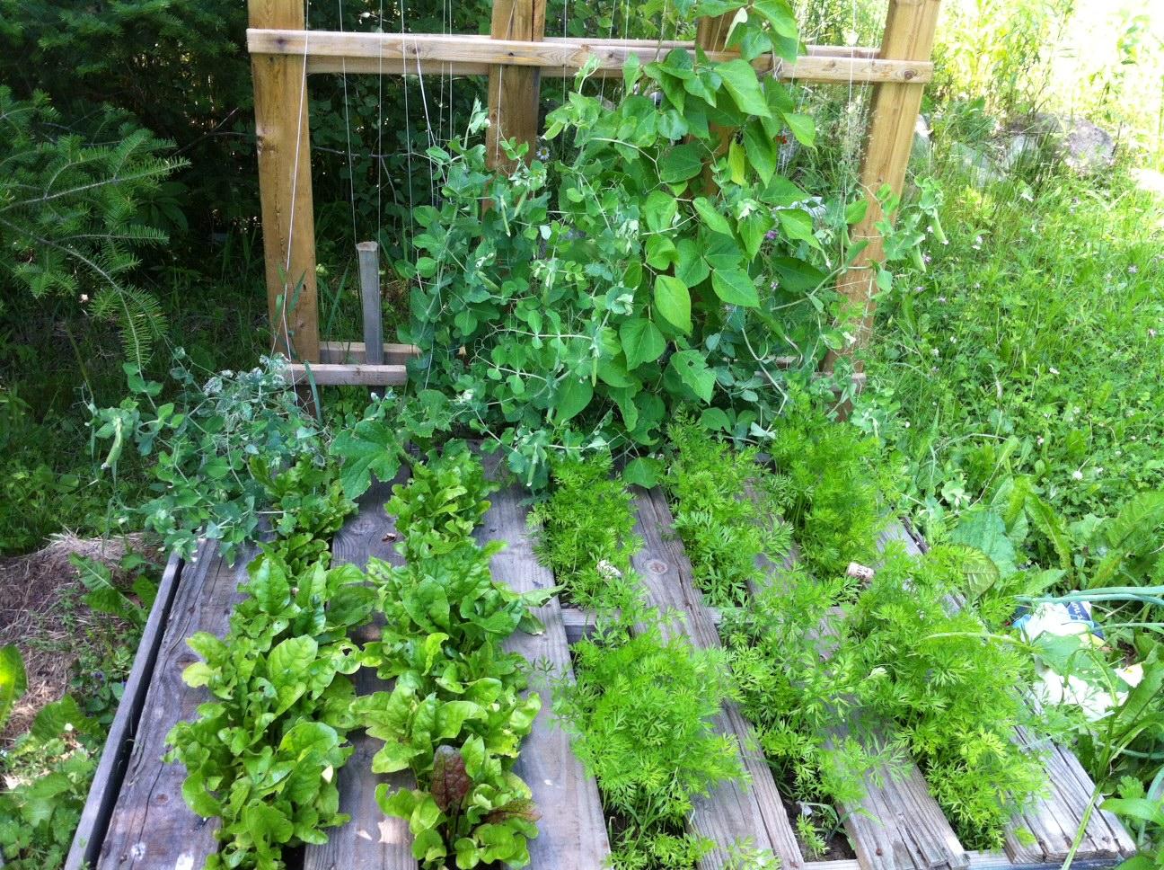 Come Arredare Il Giardino Con I Pallet : Arredare il giardino con ...