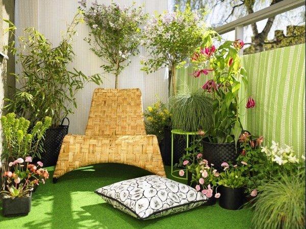 Arredare terrazzo: la scelta delle piante