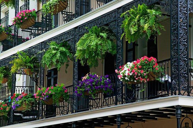 Fiori da balcone: consigli pratici per un balcone fiorito