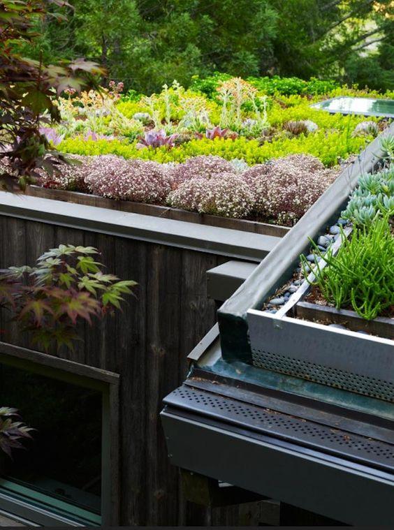 tetto verde benefici