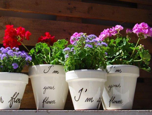 Vasi Da Giardino In Terracotta Plastica Prezzi E Modelli