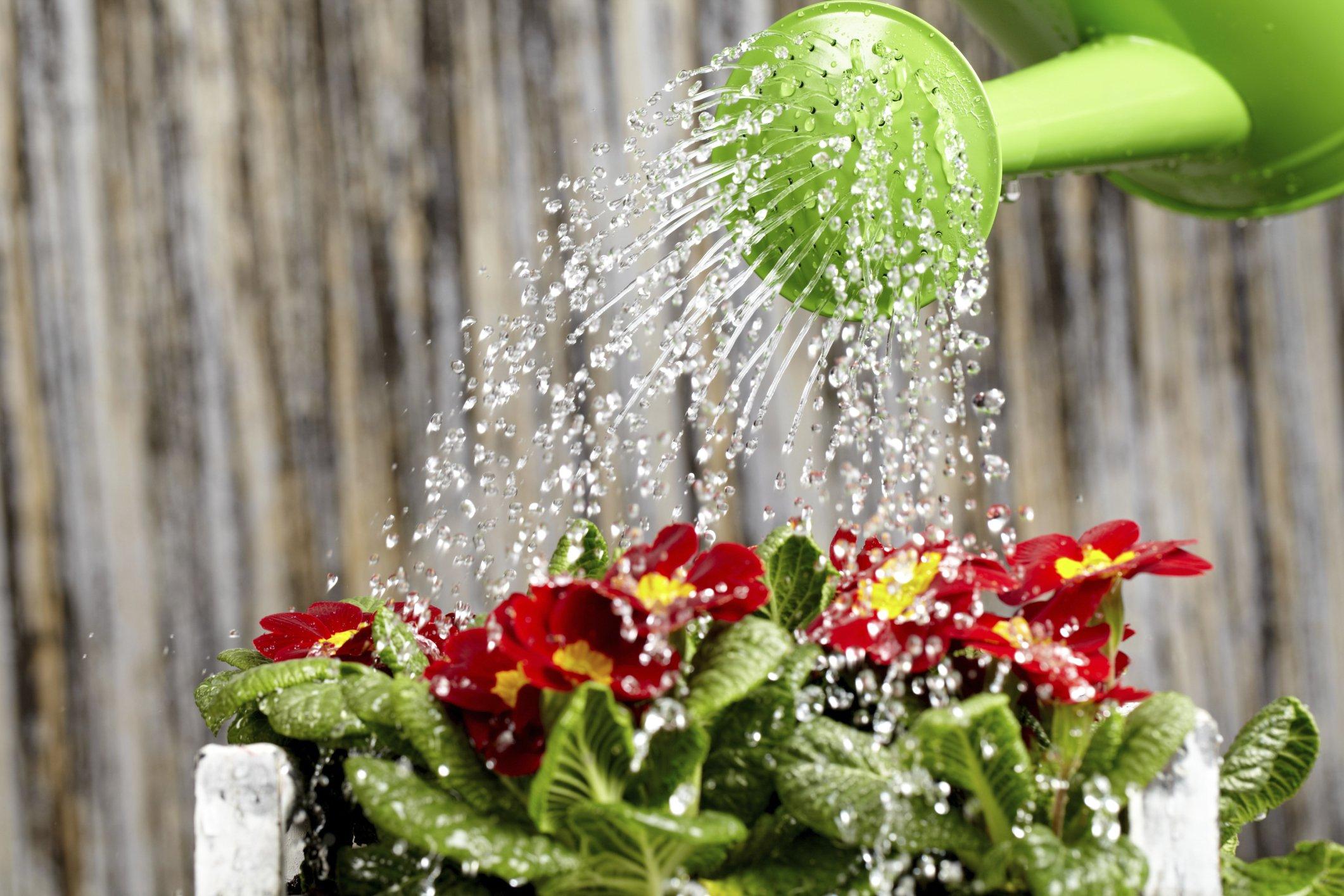 riciclo delle acque piovane fai da te