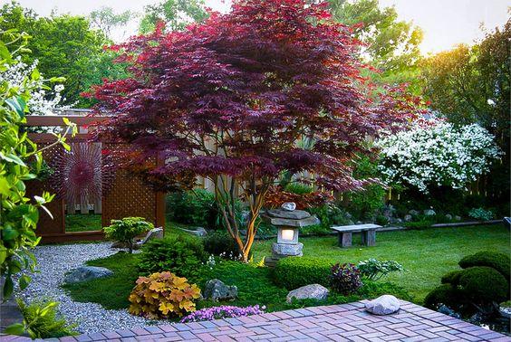 Alberi da giardino: consigli e suggerimenti