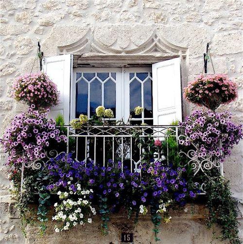 Balcone fiorito come scegliere i fiori