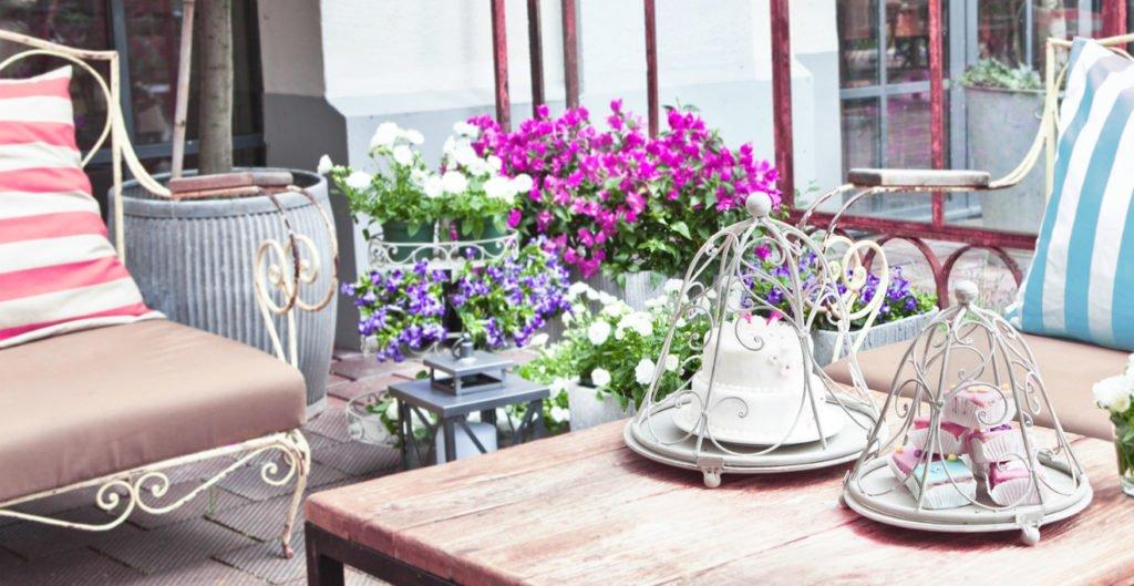 Piante da terrazzo - i gerani