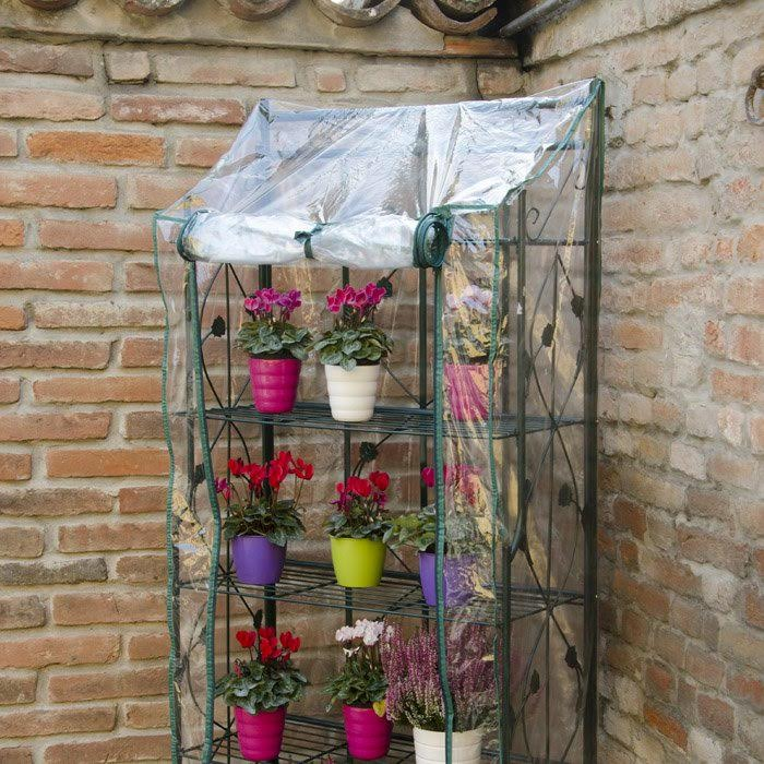 Come proteggere le piante dal freddo e mantenerle sane e pronte per la primavera