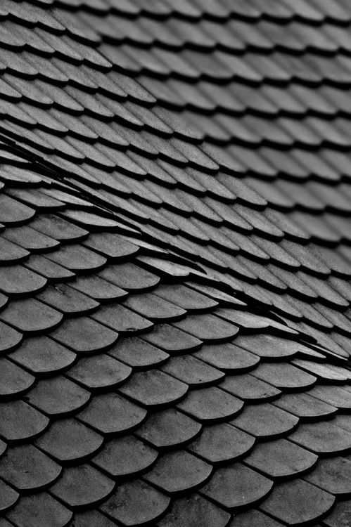 tetti e tegole