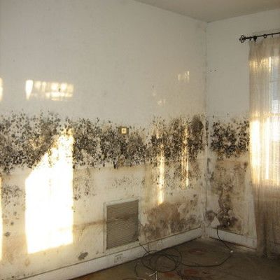 antimuffa sui muri