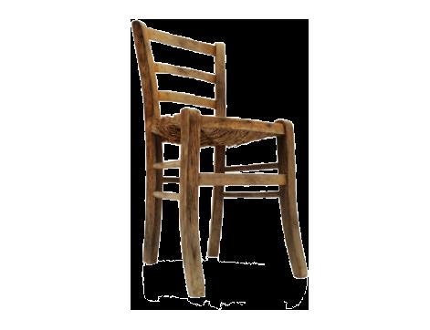 sedie calligaris in plastica imbottite in metallo