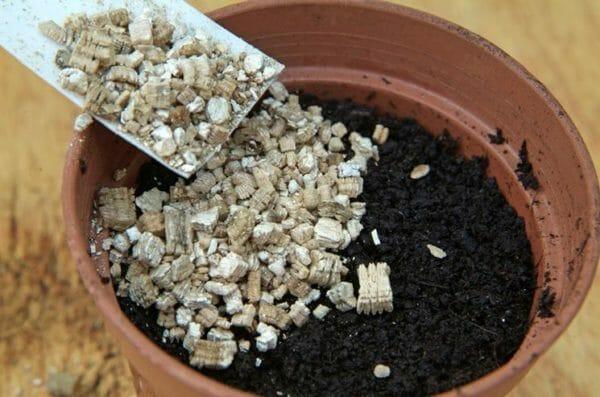 vermiculite usi in agricoltura