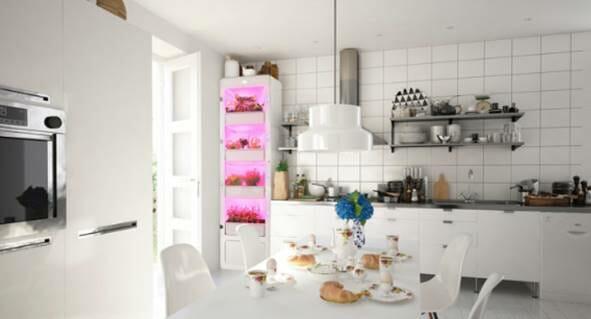 Photo of Scopri MiobiO, la serra intelligente e glamour per la tua casa