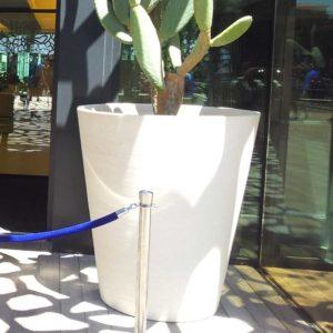 vaso bianco in terracotta