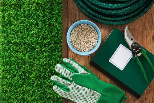 Photo of Prato a rotoli per il giardino o erba seminata? scopriamo insieme vantaggi e svantaggi