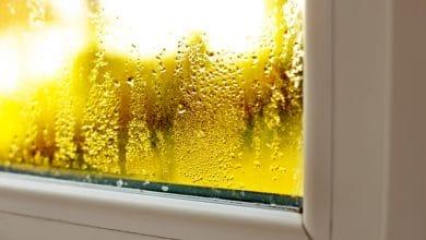 Photo of Condensa in casa: cosa fare, tanti consigli utili per eliminarla e prevenirla